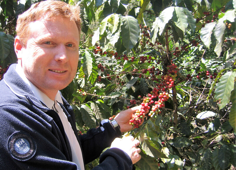 Bei den Kaffeekirschen in Guatemala