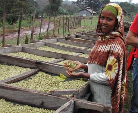 Röster Hannes Hüthmair war bei der Ernte vor Ort in Äthiopien